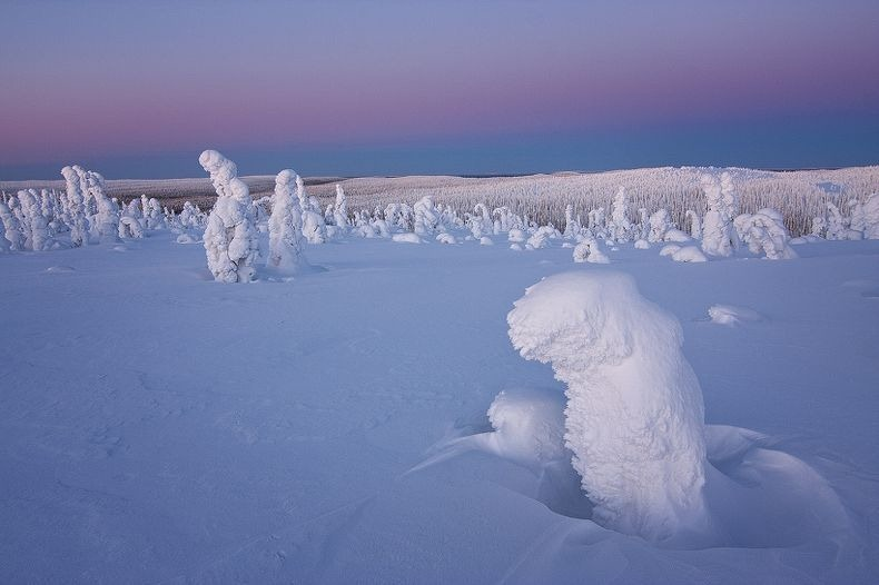 Sentinels-of-the-Arctic-1[2]