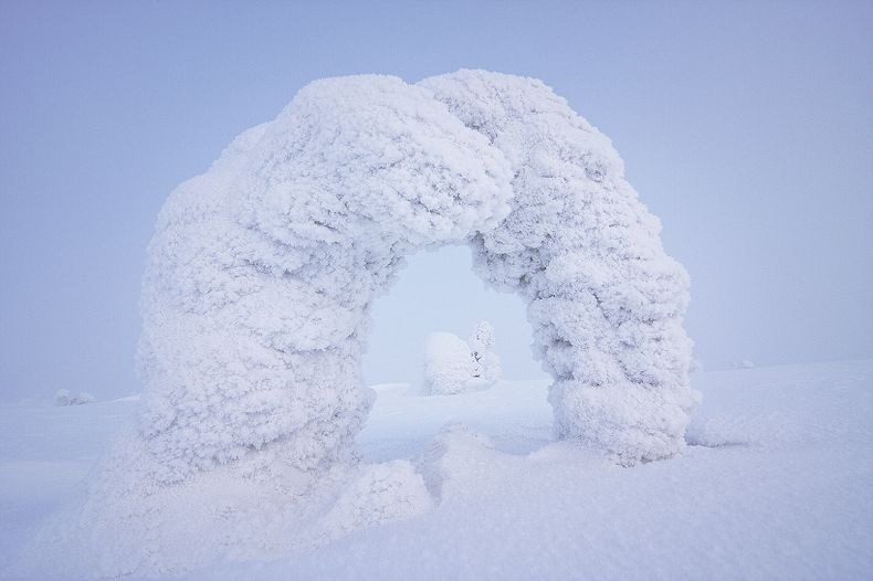 Sentinels-of-the-Arctic-3[2]