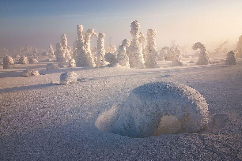 Sentinels-of-the-Arctic-4[2]