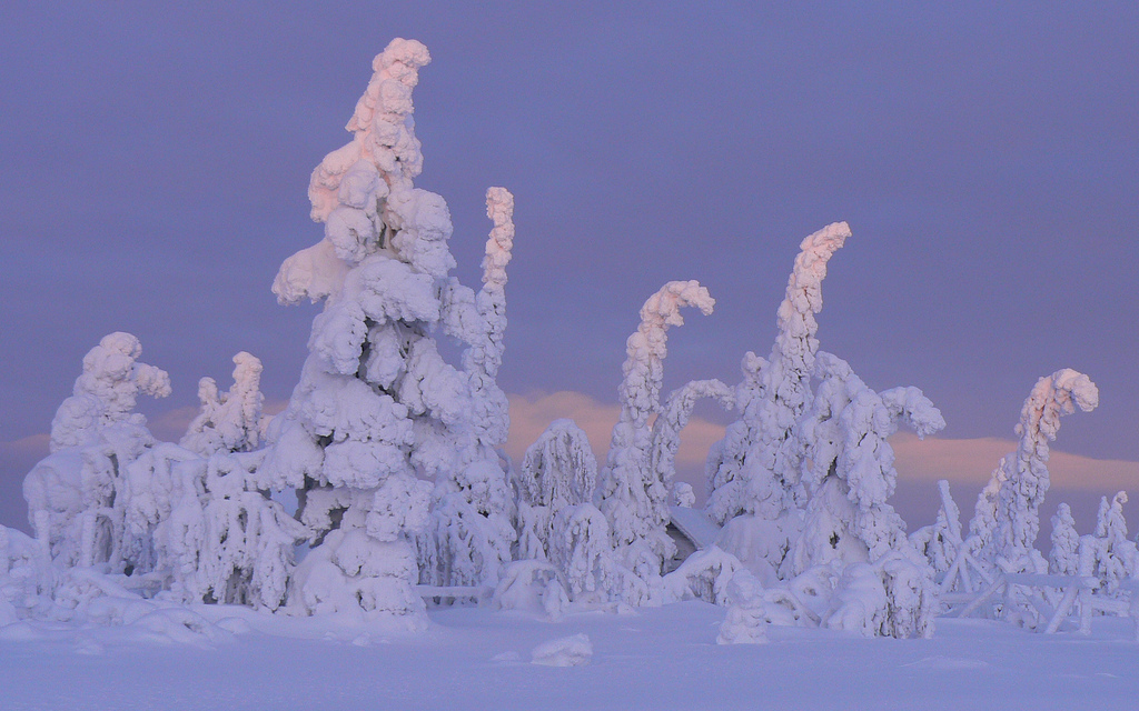 Sentinels-of-the-Arctic-Finland