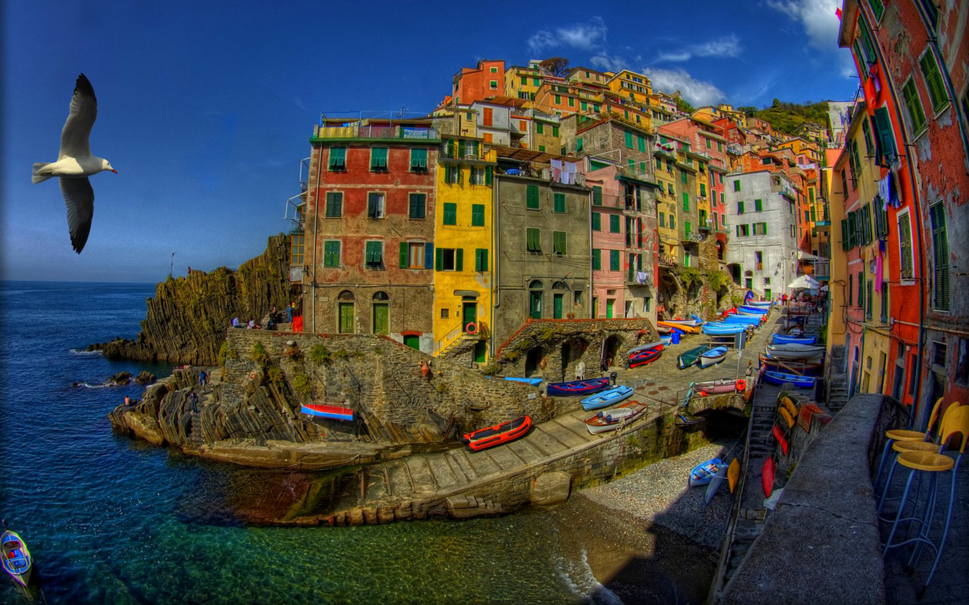 animals_widewallpaper_riomaggiore-italy_73034