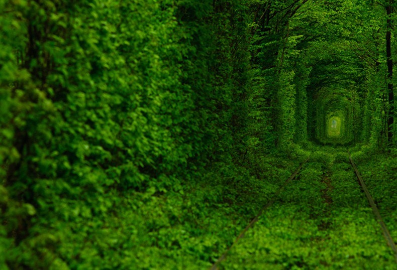 tunnel-of-love-3[2]