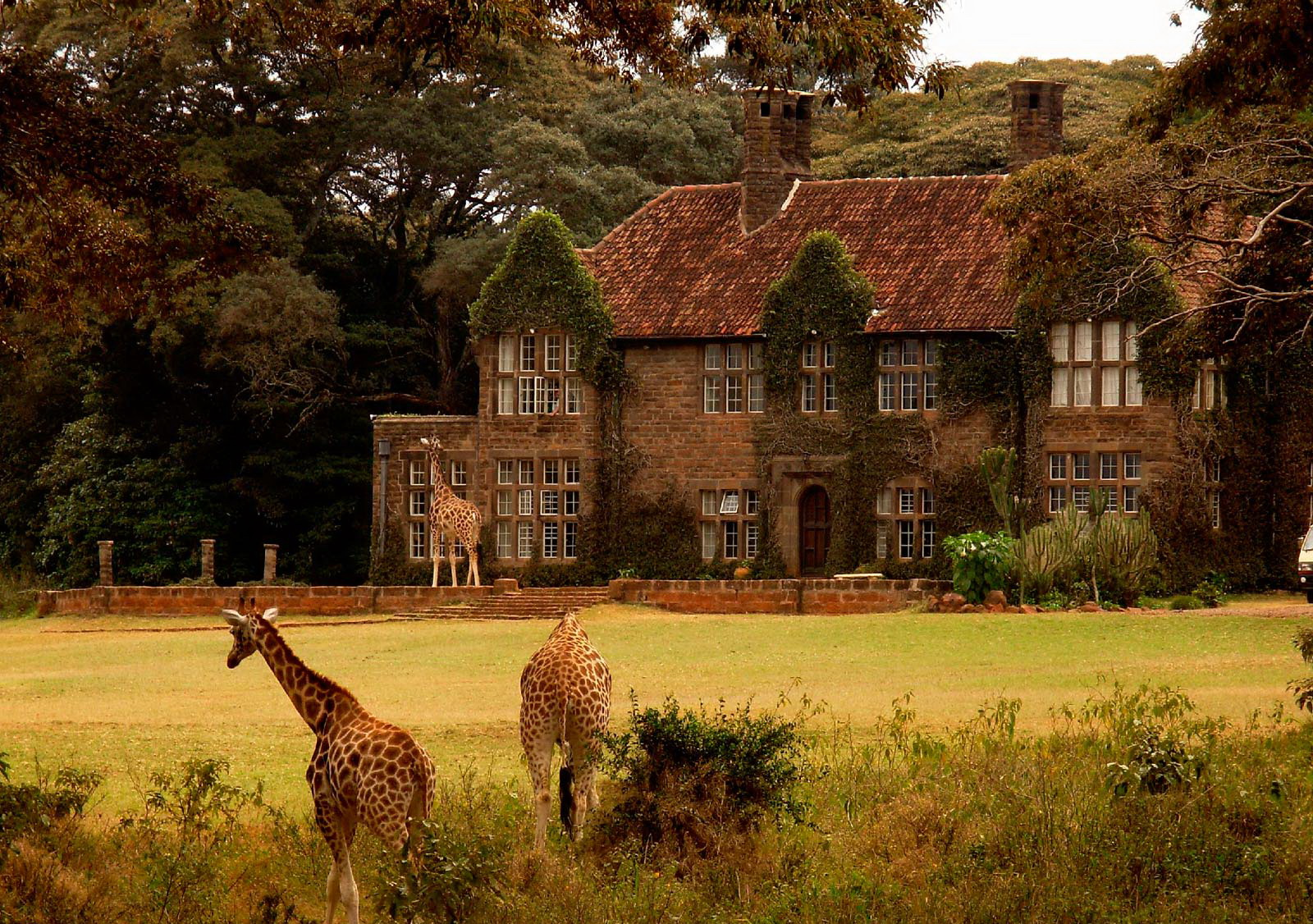 giraffe-centre-in-nairobi-kenya-by-phillip-black-2007